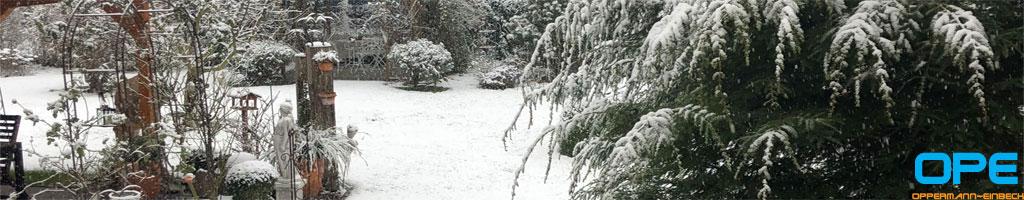 winter2021-04.jpg