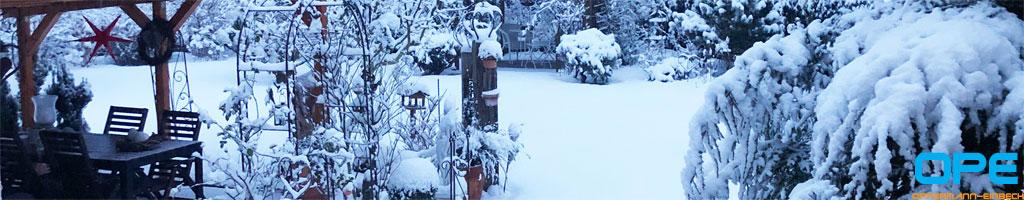 winter2021-09.jpg